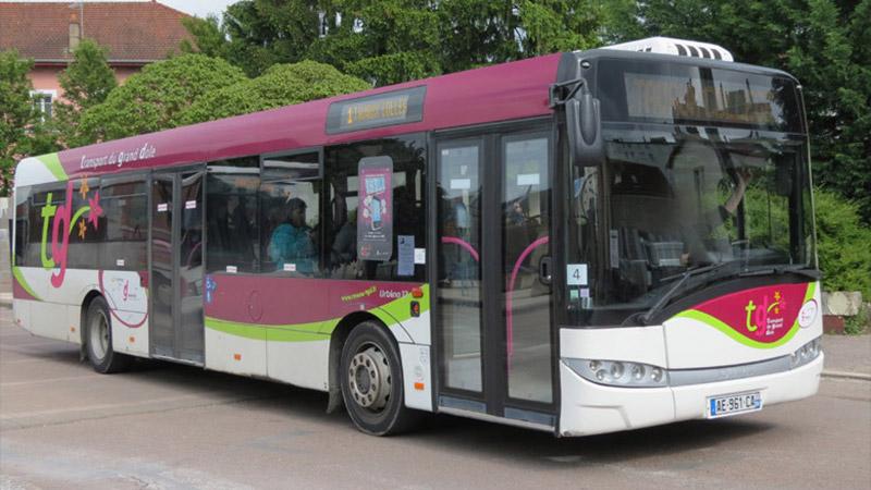 bus-grand-dole